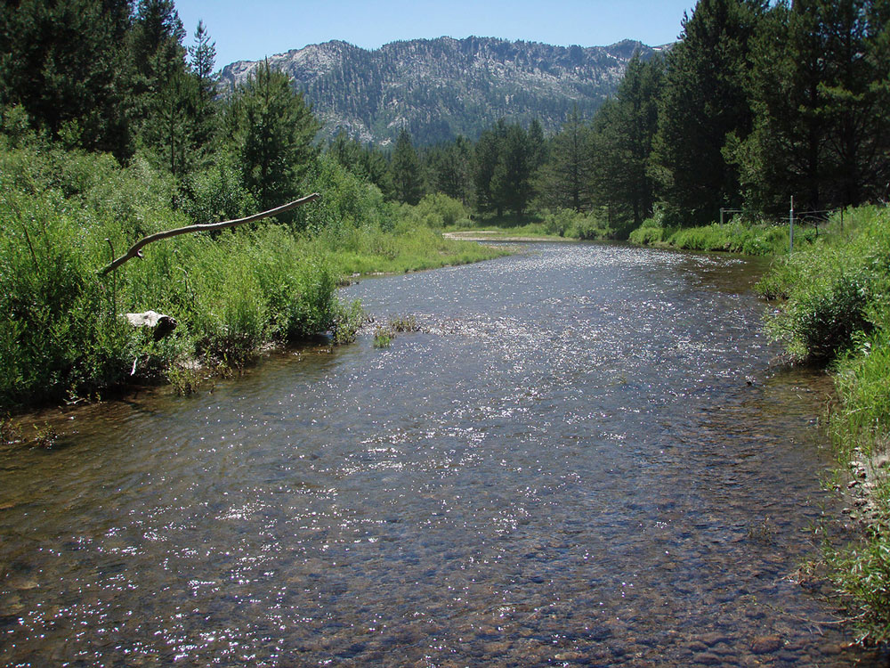 healthy upper truckee river restoration