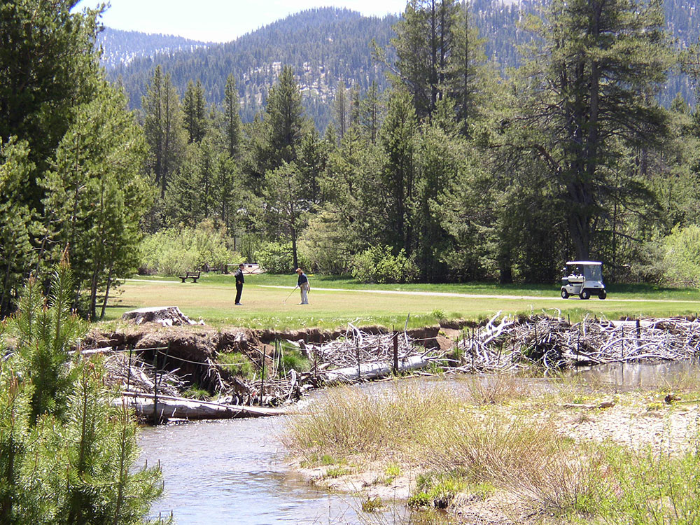 current-upper-truckee-golf-conditions