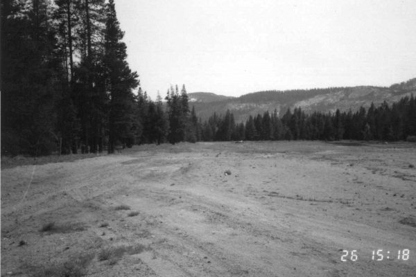 1988 Meadow was bare